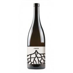 Šedý pinot (Pinot gris)